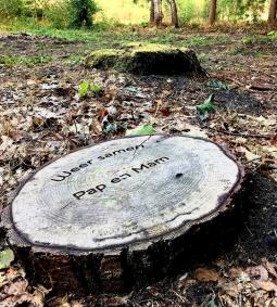Natuurbegraven in Nederland